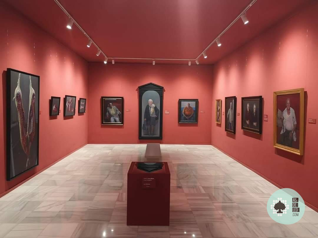 Iluminacion LED en Museo Casa Ibañez - Focos carril LED - 04